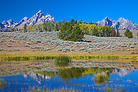 Grand Tetons reflected into pond in Grand Teton National Park