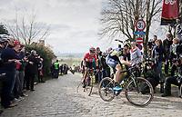 Mathew Haymen (AUS/Orica-Scott) on top of the Paterberg<br /> <br /> 72nd Dwars Door Vlaanderen (1.UWT)<br /> 1day race: Roeselare &rsaquo; Waregem BEL (203.4km)