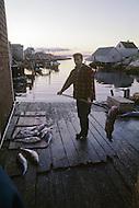 Nova Scotia, Canada, 1967. Fisherman in Peggys Cove.