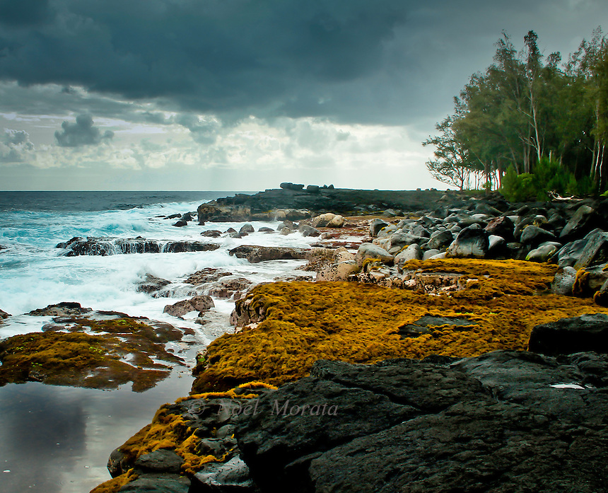 Coastal ocean views In the Puna District, Hawaii