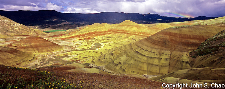 Panorama of sunlit painted hills with foreground flowers distant