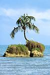 Livingston Island