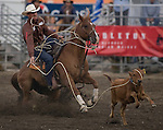 Ryan Watkins, from Dublin, TX chases a calf during the Tie Down Roping at the Kitsap County Fair and Stampede  held Aug. 26 to Aug. 30, 2009 in Silverdale, WA.  Jim Bryant Photo. All Right Reserved. © 2009