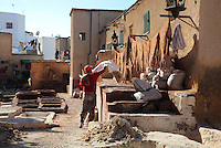 The Tanners' souq, where animal skins are treated in brick baths to make leather, in the textile market or Guersa el Kebira, in the medina or old town of Tetouan, on the slopes of Jbel Dersa in the Rif Mountains of Northern Morocco. Tetouan was of particular importance in the Islamic period from the 8th century, when it served as the main point of contact between Morocco and Andalusia. After the Reconquest, the town was rebuilt by Andalusian refugees who had been expelled by the Spanish. The medina of Tetouan dates to the 16th century and was declared a UNESCO World Heritage Site in 1997. Picture by Manuel Cohen