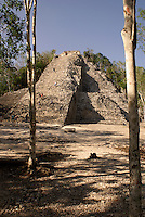 The Nohoch Mul pyramid at the Mayan ruins of Coba, Quintana Roo, Mexico. This is said to be the tallest Mayan structure on the Yucatan Peninsula..