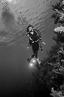 9 June 2015: SCUBA Diver Sally Herschorn followed by her son, Josh Wolfstein, explore the coral reef at Spanish Bay Reef, on the North Shore of Grand Cayman Island. Located in the British West Indies in the Caribbean, the Cayman Islands are renowned for excellent scuba diving, snorkeling, beaches and banking.  Mandatory Credit: Ed Wolfstein Photo *** RAW (NEF) Image File Available ***