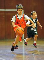 2014 CCOP BASKETBALL