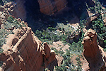 Looking down on Boynton Canyon from a helicopter.