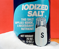 IODIZED SALT<br /> Contains About 0.02% Potassium Iodide By Weight.