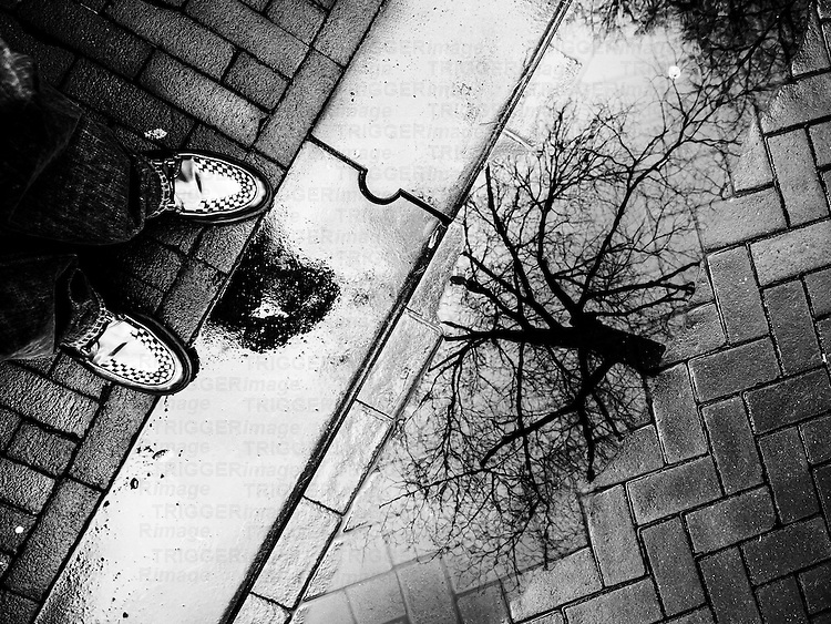 Man's feet in silver shoes with tree reflected in a puddle