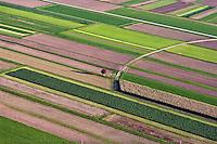 Slovenia Fields near the city of Kranj (nort-west Slovenia)