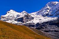 Switzerland-Bernese Oberland-Misc.