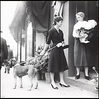 BNPS.co.uk (01202 558833)<br /> Pic: Bonhams/BNPS<br /> <br /> Shopping in Georgetown, Jackie orders some flowers for the evening's dinner party.<br /> <br /> Fascinating photographs of the Kennedys during their first year of marriage have emerged for auction.<br /> <br /> The intimate snaps of the future US president and his wife Jackie were taken by renowned photographer Orlando Suero who spent five days with the couple at their Georgetown home in May 1954.<br /> <br /> At the time, Kennedy was a young senator from Massachusetts establishing himself as one to watch on the US political scene.<br /> <br /> The collection's owner, Max Lowenherz, donated the bulk of the photographs and negatives to the Peabody Institute of Johns Hopkins University in Maryland, USA.<br /> <br /> He has now decided to put 31 of them up for auction and they are tipped to sell for &pound;4,900 ($6,000).