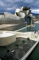 The Guggenheim Museum in Bilbao 2001