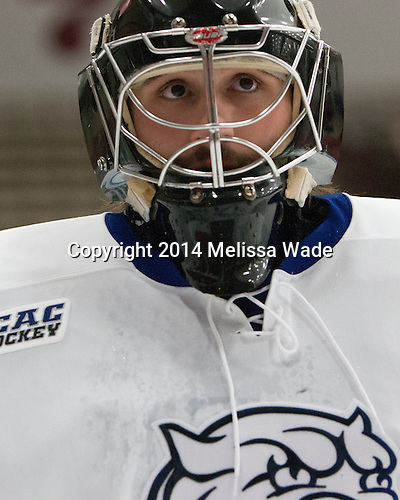 The Wentworth Institute of Technology Leopards defeated the visiting Johnson & Wales University Wildcats 3-2 on Saturday, November 8, 2014, at Walter Brown Arena in Boston, Massachusetts.