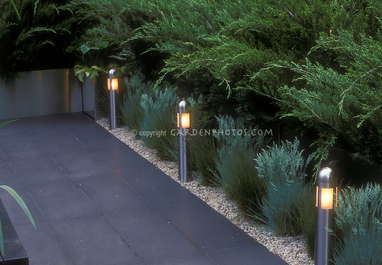 Garden Steps and Walkway Night Lighting Plant Flower Stock