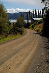 Country road winding toward Otago Harbour, Otago Peninsula, New Zealand