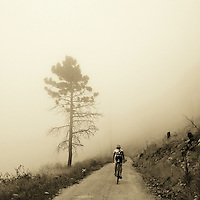 Riding through the fog on Logan Mill Road, in the foothills above Boulder, Colorado.