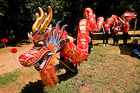 A group of people walk with a dragon puppet during the Charlotte Dragonboat Association racing on Lake Norman in NC.