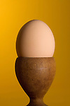 Brown egg in a wooden egg cup in studio yellow background.