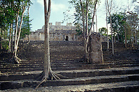 Structure VIII at the Mayan ruins of Calakmul, Campeche, Mexico. Calakmul is located in the 7,231.85 square km Calakmul Biosphere Reserve, which was established in 1989. Calakmul was made a UNESCO World Heritage Site in 2002.