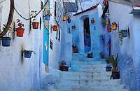 Narrow stepped street painted blue with coloured plant pots decorating the walls of the houses, in the medina or old town of Chefchaouen in the Rif mountains of North West Morocco. Chefchaouen was founded in 1471 by Moulay Ali Ben Moussa Ben Rashid El Alami to house the muslims expelled from Andalusia. It is famous for its blue painted houses, originated by the Jewish community, and is listed by UNESCO under the Intangible Cultural Heritage of Humanity. Picture by Manuel Cohen