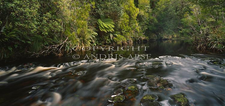 Pegasus Creek. Port Pegasus. Stewart Island (Rakiura) National Park. New Zealand.