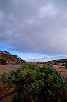 Rainbow and Lightning. Canyonlands National Park, Utah
