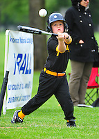 T-BALL PIRATES 2011