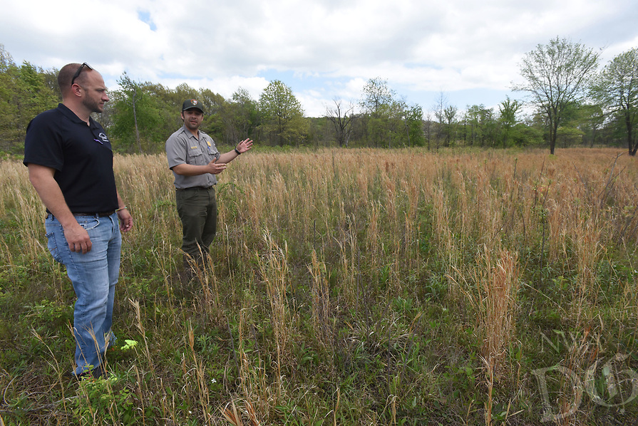 NWA Democrat-Gazette/FLIP PUTTHOFF <br /> Tanner Bedwell with Benton County Quail (left) looks at acres of native grass at Pea Ridge National Military Park with Nolan Moore, chief of resources at the Civil War park. An effort to boost bobwhite quail numbers at the park and return the park to its Civil War era appearance is ongoing. Since 2015, 474 acres of cedar trees and 130 acres of fescue have been removed, Moore said.