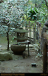 Sazanka Camellia Ishidoro Stone Lantern Chozu Stone Washbasin Bamboo Faucet Ryokugaku Plum Garden Sankeien Gardens Yokohama Japan