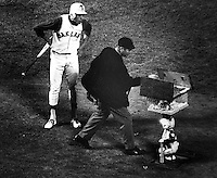 Rick Monday looks at umpire after being called out on strikes, umpire reaches a new baseball from Charlie Finley's mechanical rabbit that comes out of the ground with a basket of new balls..Ron Riesterer/photo