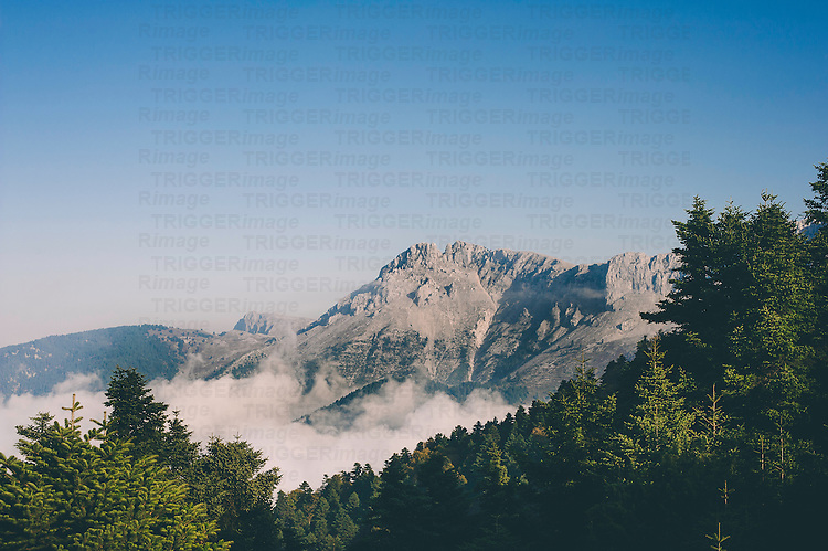 Bare mountain top with clouds below in valley and green trees under a blue sky