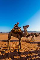 Bedouin man aboard camel in the Arabian Desert, Wadi Rum, Jordan.