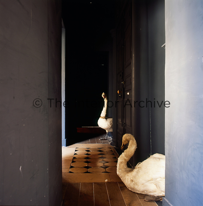 Two stuffed swans stand guard at the entrance to an apartment