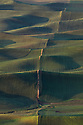 WA09643-00...WASHINGTON - View of Palouse farm fields from Steptoe Butte State Park in Whitman County.