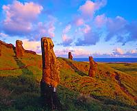 Moai Statues at Rano Raraku  Easter Island, Chile  Rapa Nui National Park  Sauth Pacific Ocean  Sunset  Quarry for famous statues  February
