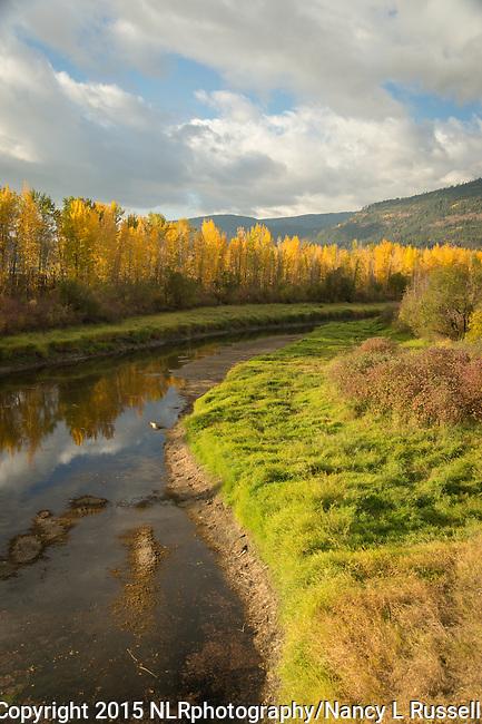 Golden fall colors along Deep Creek