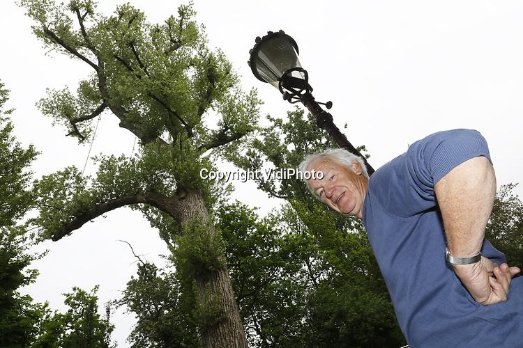 Foto: VidiPhoto<br /> <br /> AMSTERDAM - Boomselecteur Nico Hoogland uit Amsterdam bij zijn 130 jaar oude populier aan de rand van het Vondelpark.