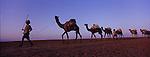 Last Salt caravan Ethiopia