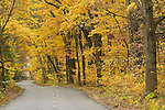 Photo by Dan Irving.Fall Colors in Allegan County, 2006.