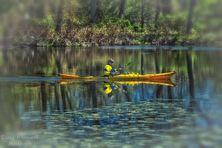 Peaceful kayaking on Trout Pond at the Toronto Islands.