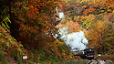2012_10_24_FOREST_OF_DEAN_STEAM_TRAIN