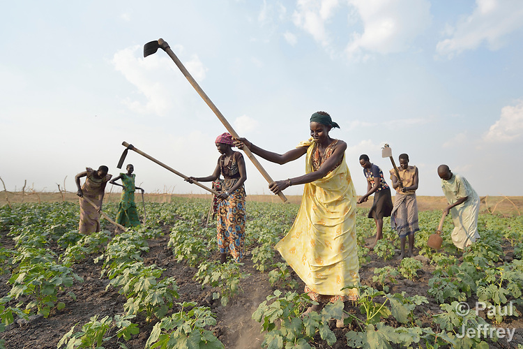 Adhieu Deng Ngewei and other women work together on April 12, 2017, in a community vegetable garden in Dong Boma, a Dinka village in South Sudan's Jonglei State. Most of the women's families recently returned home after being displaced by rebel soldiers in December, 2013, and they face serious challenges in rebuilding their village while simultaneously coping with a drought which has devastated their cattle herds.<br /> <br /> The Lutheran World Federation, a member of the ACT Alliance, is helping the villagers restart their lives with support for housing, livelihood, and food security.