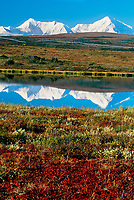 Trans Alaska oil pipeline traverses the autumn tundra, reflected in a small tundra pond in the Alaska range mountains south of Delta Junction, Alaska.