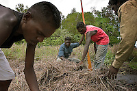 Aborigines look for eggs in a crocodile nest.  It is part of their hunting culture although dangerous even if the crocodile is not ON the nest, she may be nearby.