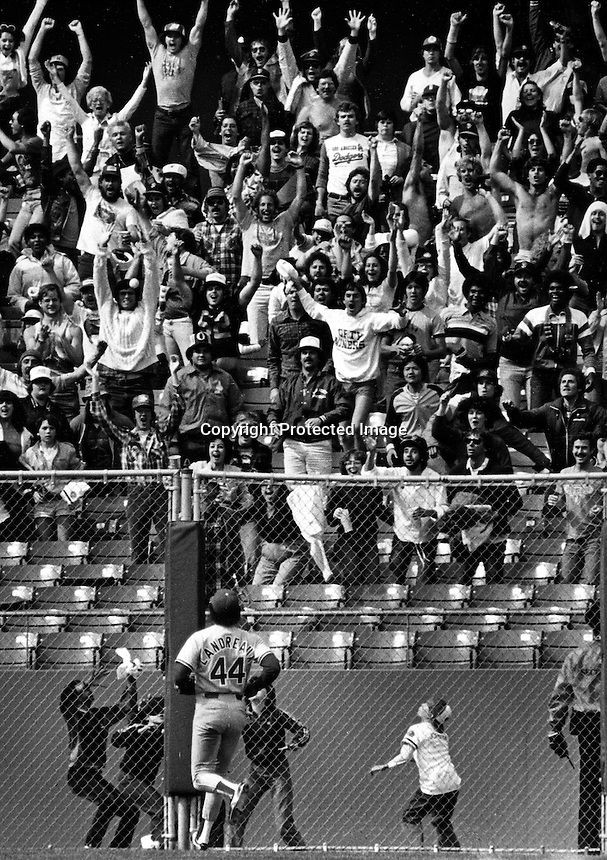 Giant fans react to a Jeff Leonard grand slam HR..at Candlestick Park. (1982 photo by Ron Riesterer)