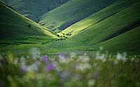 Piano Grande/Sibillini National Park, Italy; WWoE Mission