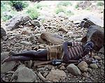 Turkana herder resting on his headstool whilst protecting his sheep Northern Kenya.
