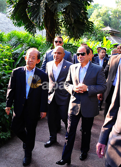 "Egypt's President Abdel Fattah al-Sisi looks at ""dendrobium Abdel Fattah al-Sisi"" orchids named in his honour during a visit to the Botanical gardens in Singapore on August 31, 2015. President Abdel Fattah al-Sisi is on a three-day state visit at the invitation of President Tony Tan Keng Yam. Photo by Egyptian President Office"